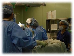 写真 手術看護認定看護師